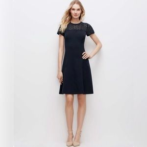 NWOT Ann Taylor Lace Yoke Fit And Flare Dress